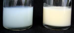 «Αρχικό γάλα» και «υστερόγαλα» – Τι σημαίνουν και τι σημασία έχουν;