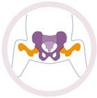 huefte-baby-logo