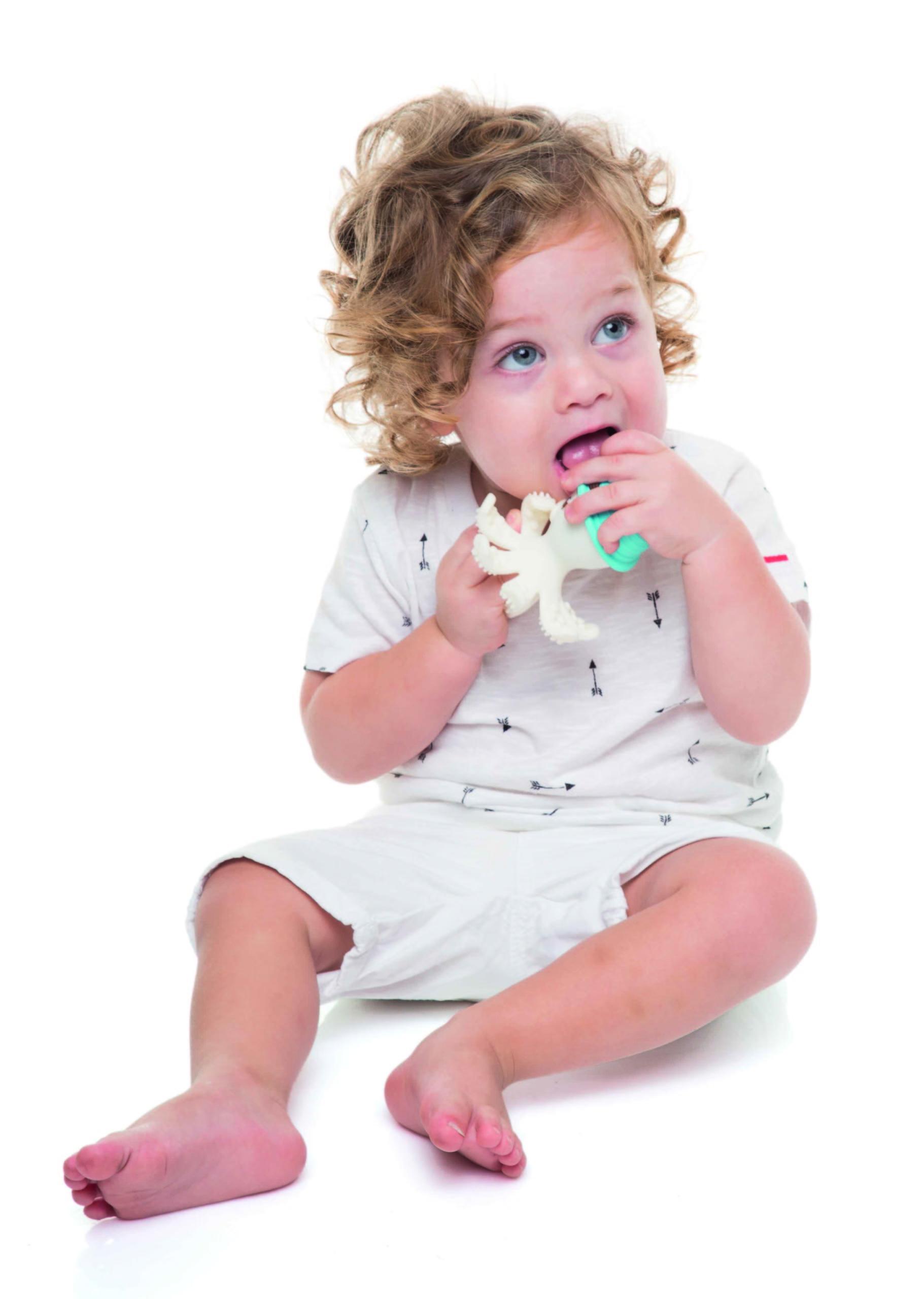 Χταποδάκι μασητικό BabyToLove